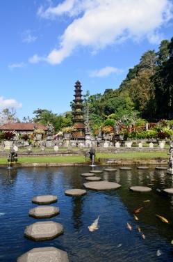 Jardin d'eau en Indonésie