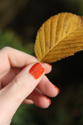 Swatch_Autumn5