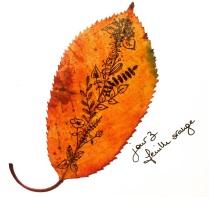 Jour_3_feuille_orange